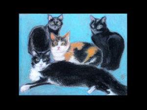 Andrea's Cats