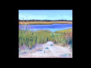 Coastal Wetlands, East Coast, NJ
